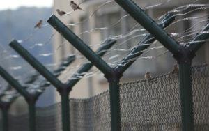Blog-zapor